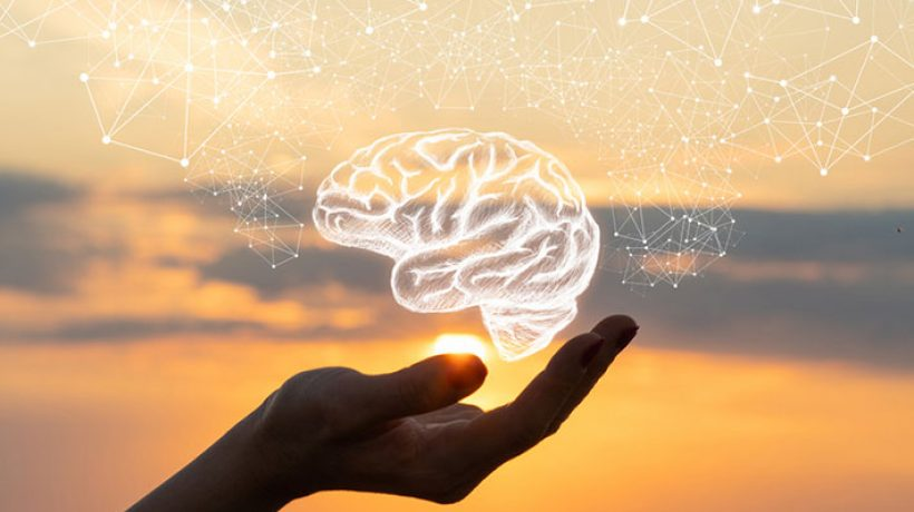 Herbs for mental clarity and improving brain health